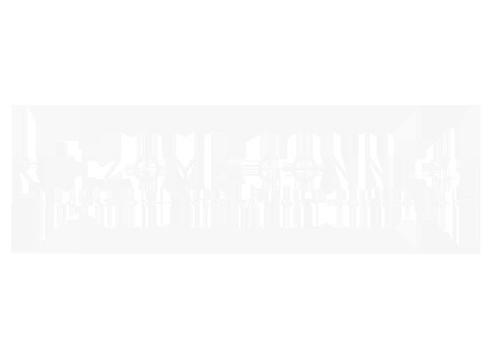 Rhizome Connect Logo